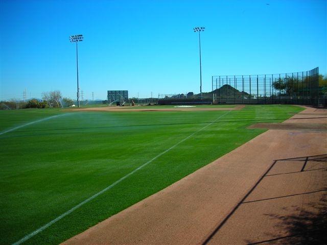 ELS Parks Fields 005