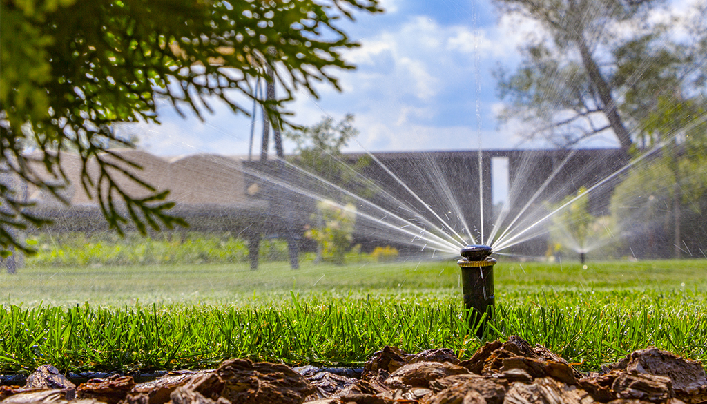 Irrigation Website